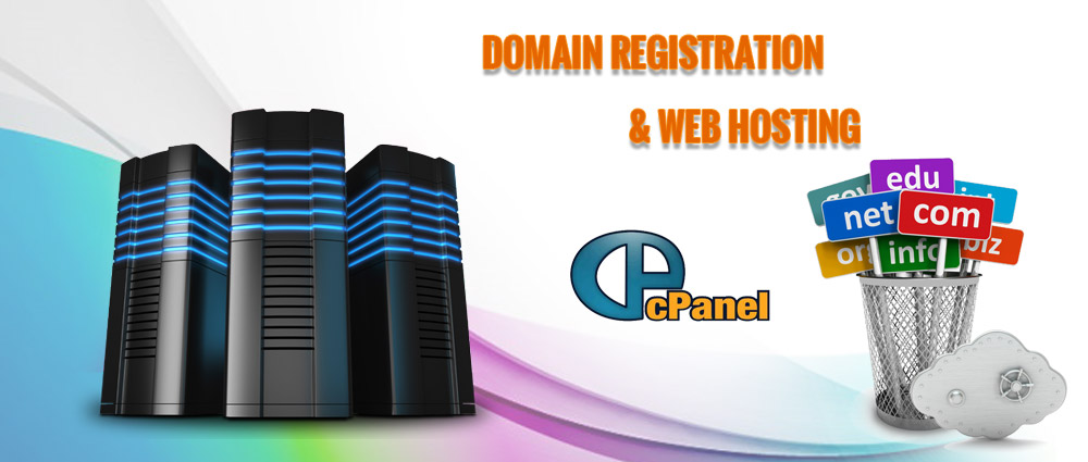 fast web development in ahmedabad